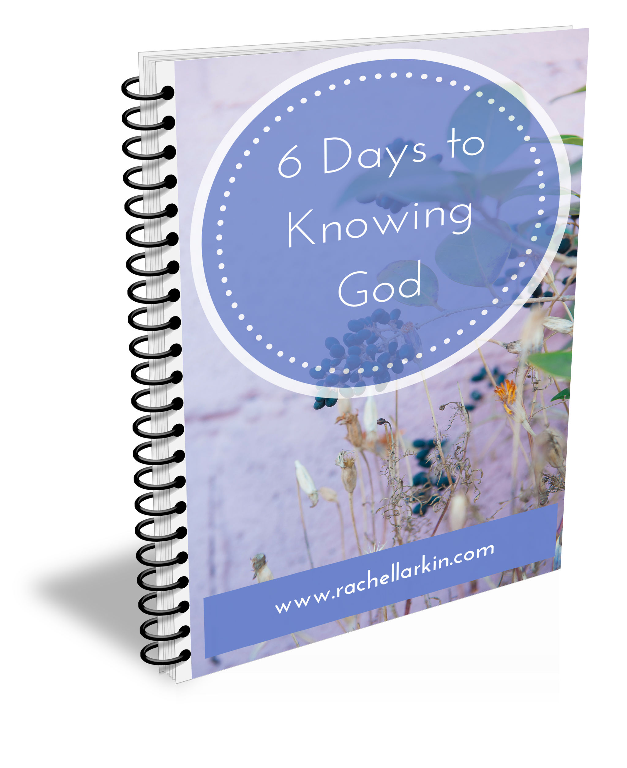 6 Days to Knowing God